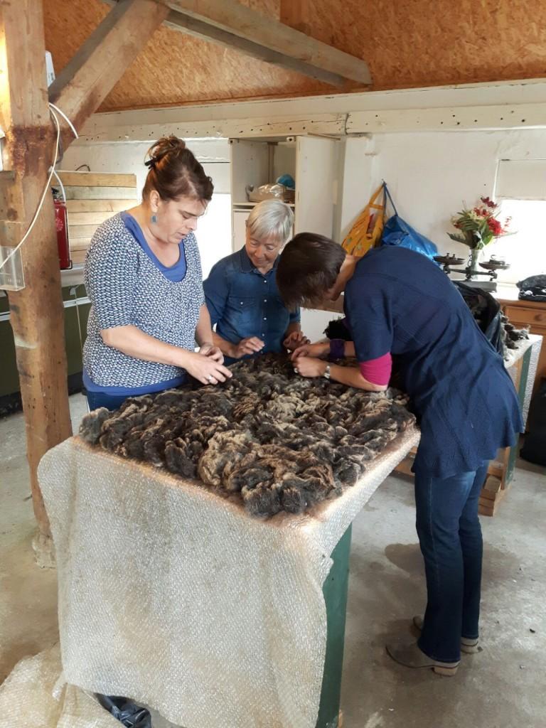 schapenvacht-vilten-workshop-2
