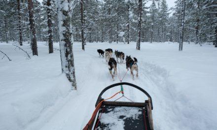 Nordic winter: een reis naar Lapland