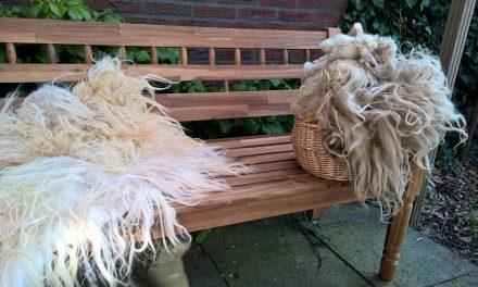 Schapenvacht vilten: vilten met pure wol