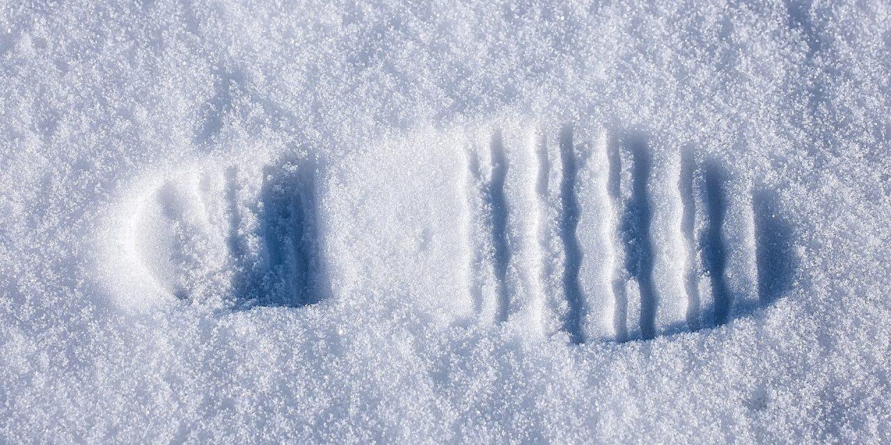 Avontuur in de sneeuw