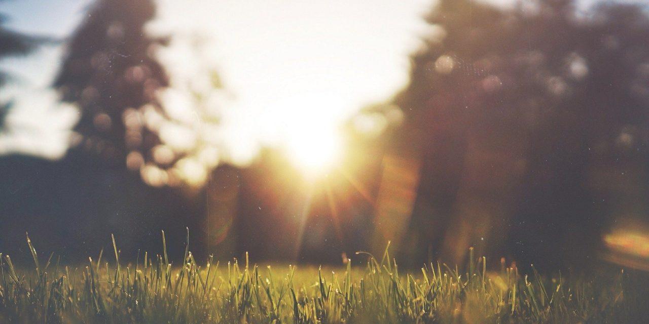 Zachte septemberzon – buiteninspiratie